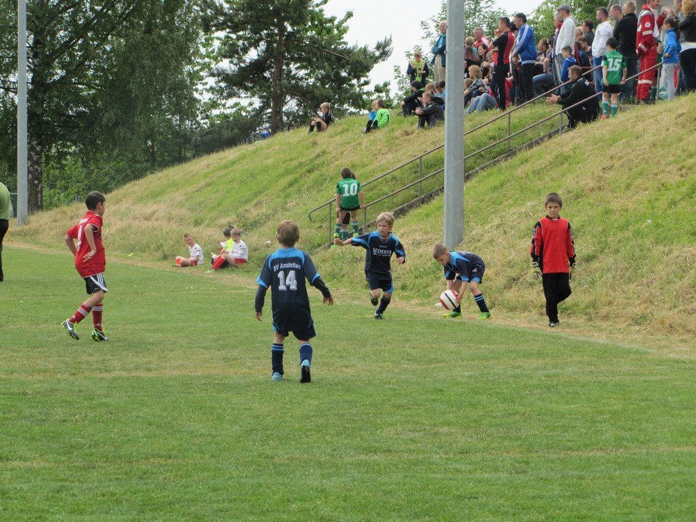 2014_06_01_F-Jugend-Turnier-Weidenstetten_14