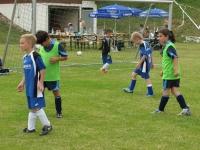 2014_07_05_Joerg_Lederer_Cup_SV_Amstetten_36