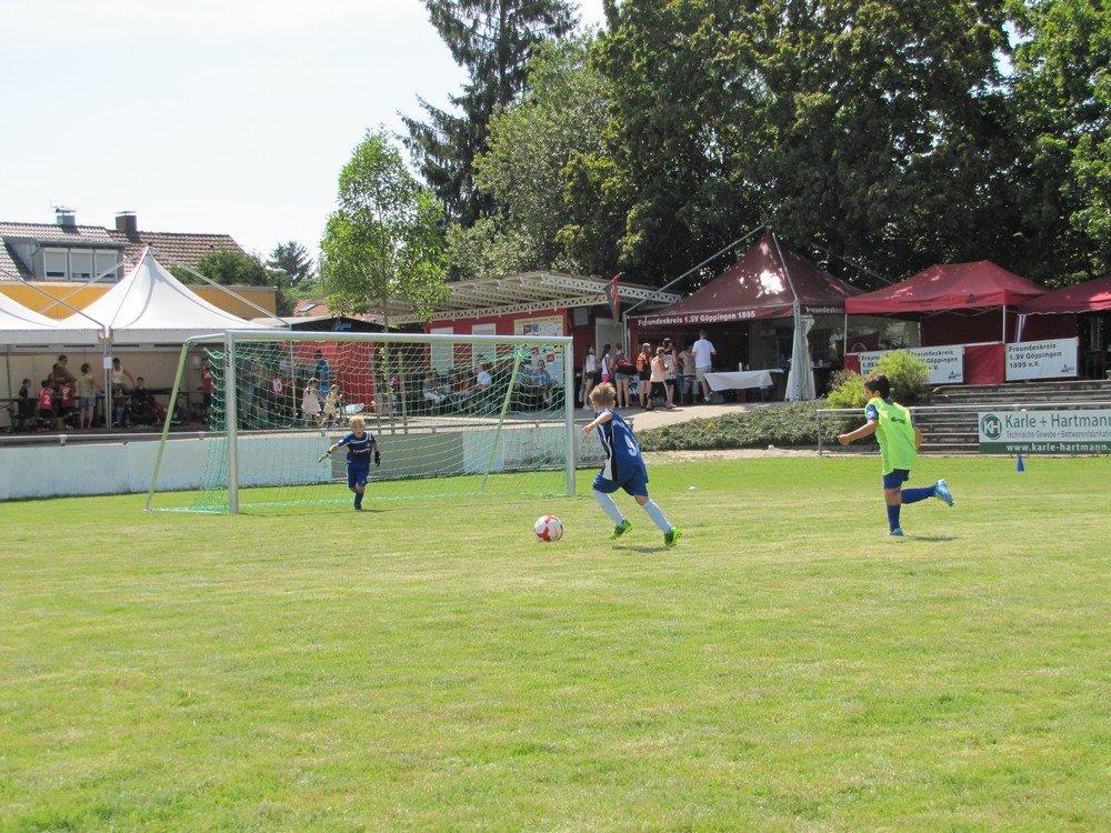 2014_07_19_F-Jugend-Turnier_SV_Goeppingen_17