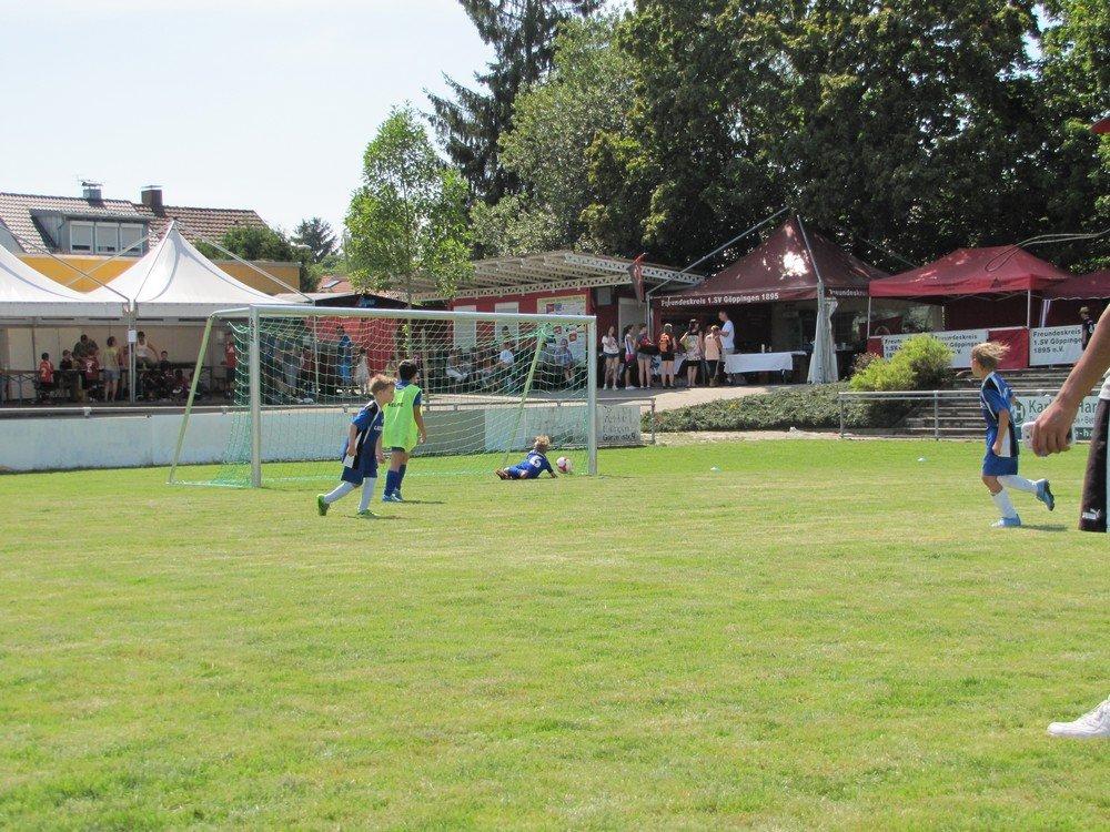 2014_07_19_F-Jugend-Turnier_SV_Goeppingen_18