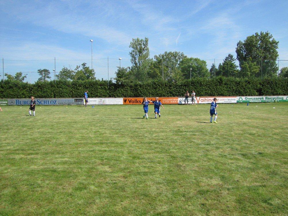 2014_07_19_F-Jugend-Turnier_SV_Goeppingen_46