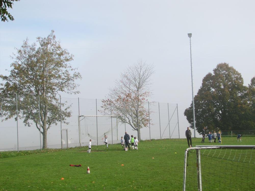 2014_10_18_F-Jugend-Spieltag_Scharenstetten_015