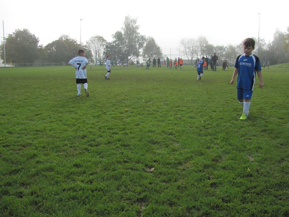 2014_10_18_F-Jugend-Spieltag_Scharenstetten_039