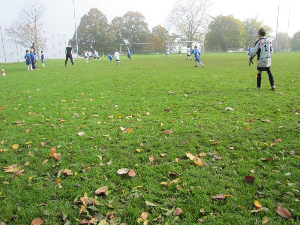 2014_10_18_F-Jugend-Spieltag_Scharenstetten_062