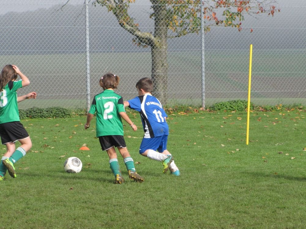 2014_10_18_F-Jugend-Spieltag_Scharenstetten_095