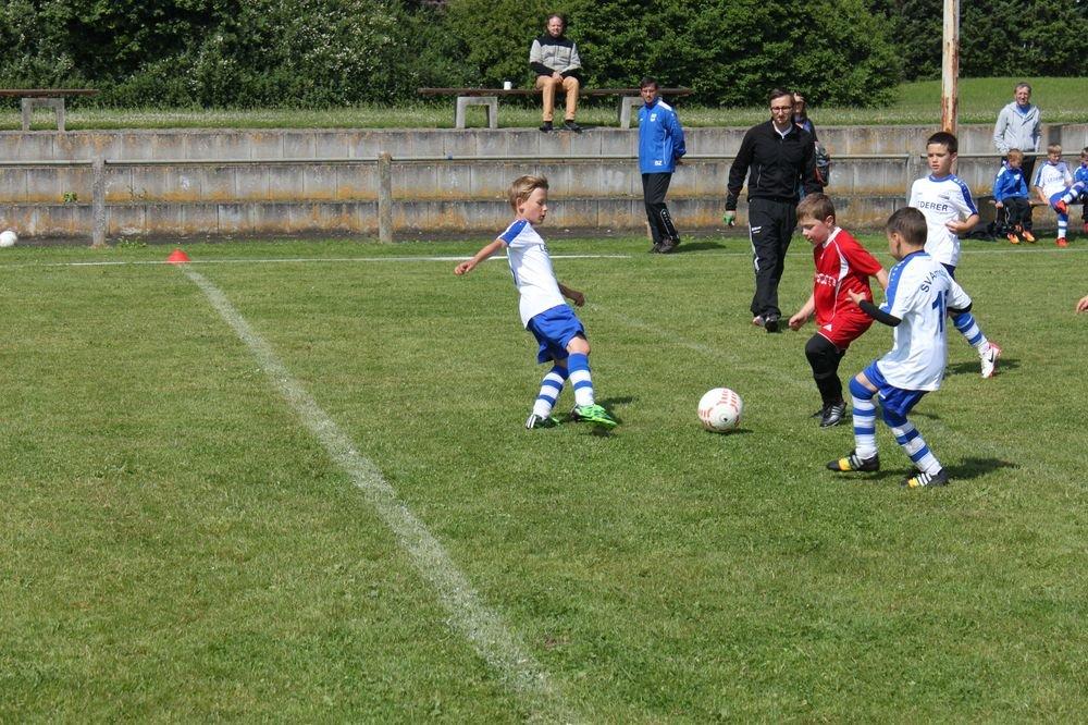 2015_06_20_F-Jugend-Spieltag_Asselfingen_006