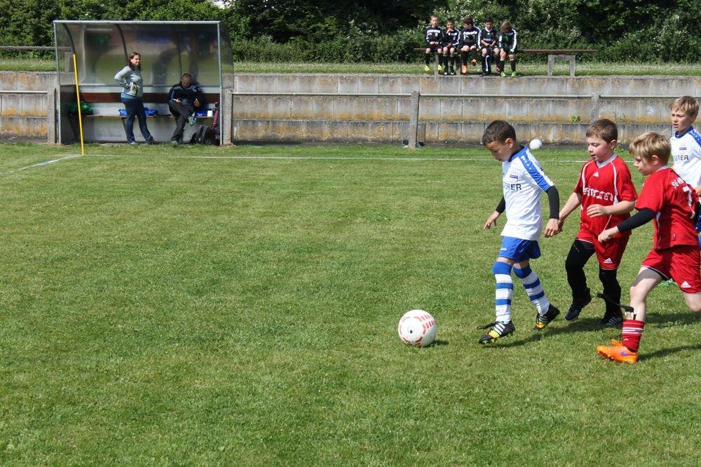 2015_06_20_F-Jugend-Spieltag_Asselfingen_007