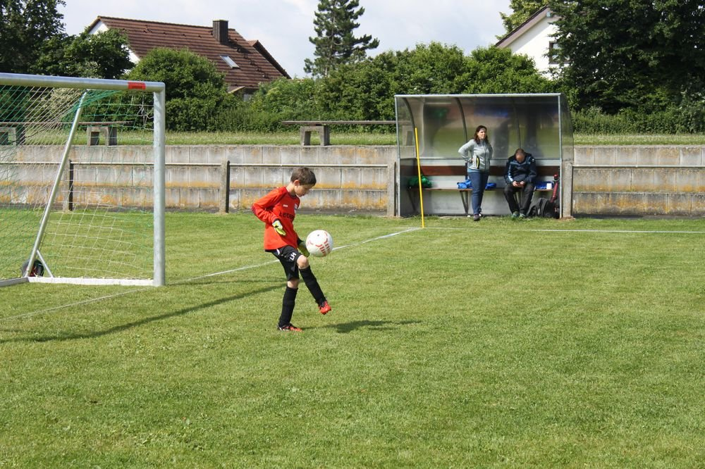 2015_06_20_F-Jugend-Spieltag_Asselfingen_010
