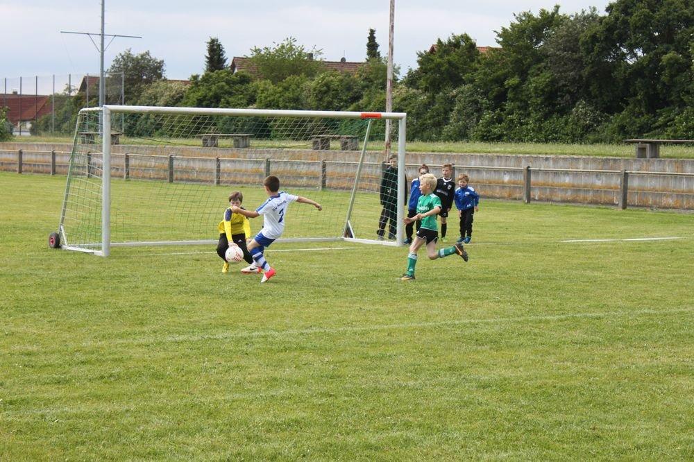 2015_06_20_F-Jugend-Spieltag_Asselfingen_012