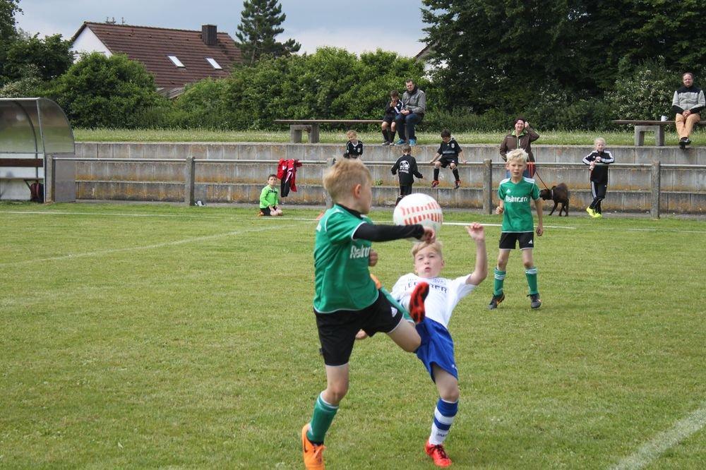 2015_06_20_F-Jugend-Spieltag_Asselfingen_016