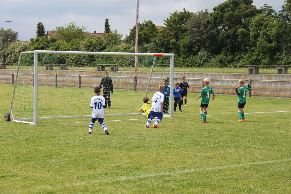 2015_06_20_F-Jugend-Spieltag_Asselfingen_022