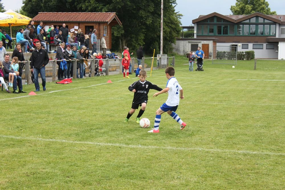 2015_06_20_F-Jugend-Spieltag_Asselfingen_037