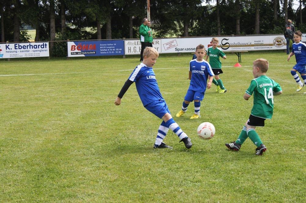 2015_06_20_F-Jugend-Spieltag_Asselfingen_110