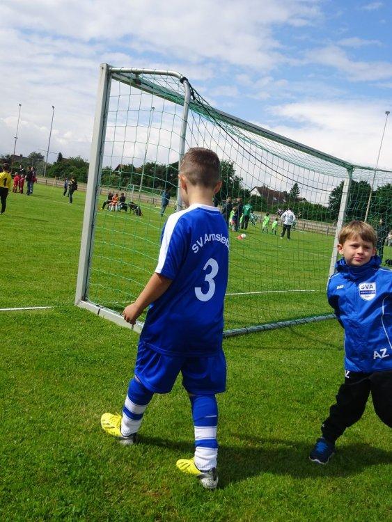 2015_06_20_F-Jugend-Spieltag_Asselfingen_201