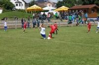 2015_06_20_F-Jugend-Spieltag_Asselfingen_008