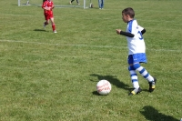 2015_06_20_F-Jugend-Spieltag_Asselfingen_009