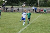 2015_06_20_F-Jugend-Spieltag_Asselfingen_013