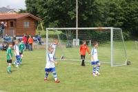 2015_06_20_F-Jugend-Spieltag_Asselfingen_018