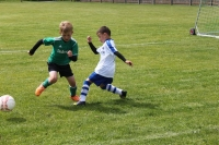 2015_06_20_F-Jugend-Spieltag_Asselfingen_020