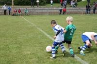 2015_06_20_F-Jugend-Spieltag_Asselfingen_021