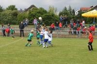 2015_06_20_F-Jugend-Spieltag_Asselfingen_025
