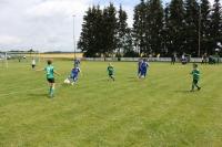 2015_06_20_F-Jugend-Spieltag_Asselfingen_113